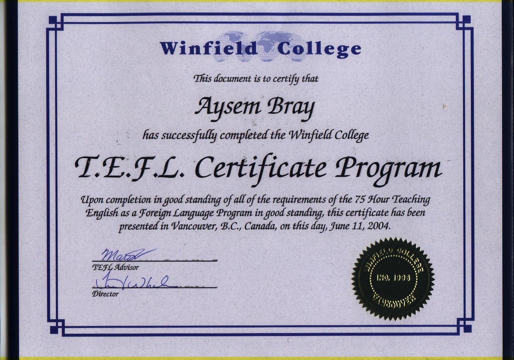 New Blog 1 Tefl Certification